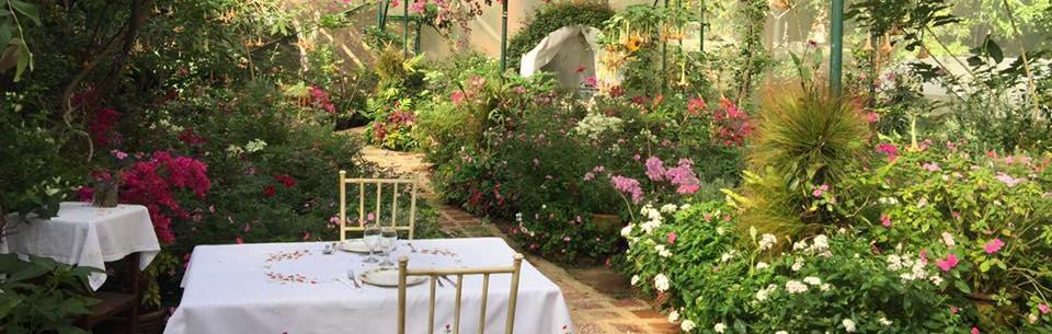 Sonyas Garden
