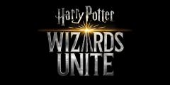 Harry Potter Wizards...