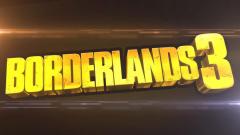 Borderlands 3 Looks...